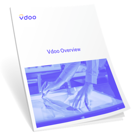Vdoo Overview